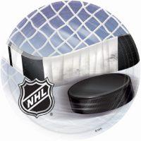 hockey_dessert_tallrik_8_st.JPG