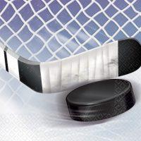 hockey_servett_16_st_25x25_cm.JPG